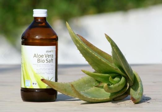 Finca Aloe Vera Costa del Sol