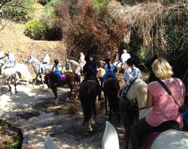 Paseos a caballo por Marbella